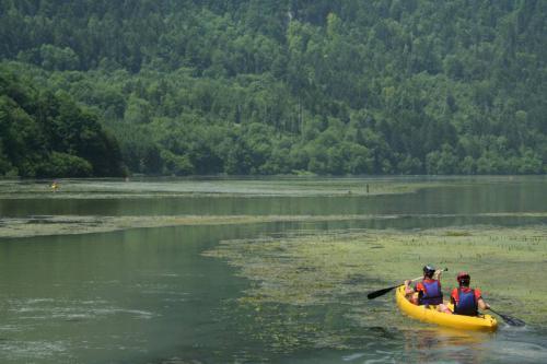 JRA 2007 - Canoe